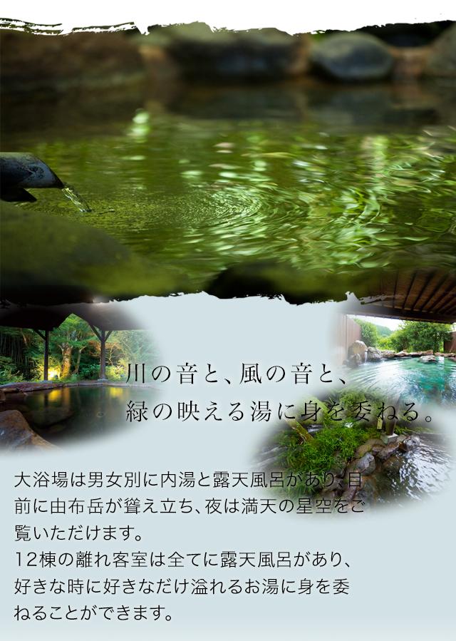 川の音と、風の音と、緑の映える湯に身を委ねる